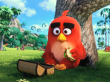 Angry Birds: Neuer Trailer zum Animationsfilm
