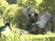 The Last Guardian: Gold-Status erreicht