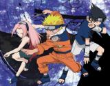 Naruto: Ultimate Ninja: Im November für PlayStation 2