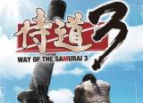 Way of the Samurai 3: Exklusives Videoreview